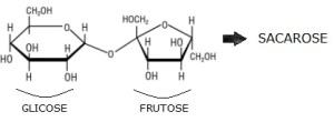 molecula_de_sacarose