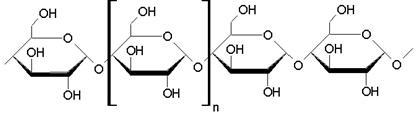 macromolecula-de-amido